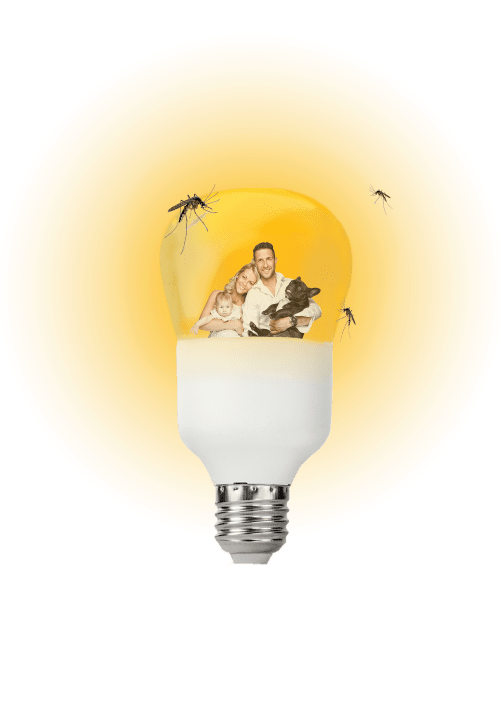 triled italia innovazione lampadine led antizanzare 3 in 1
